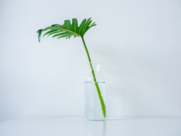 Glass bottle with palm leaf on white table