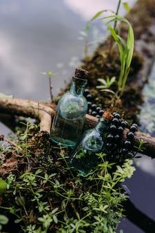 Стеклянные бутылки наполнены волшебными ингредиентами эликсир таинственный лес