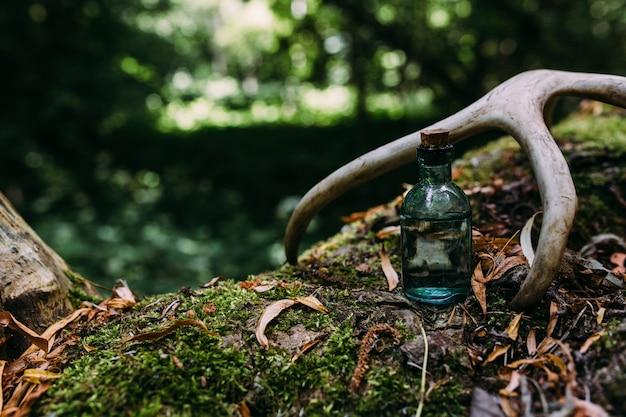 Стеклянные бутылки наполнены волшебными ингредиентами зелье таинственный лес