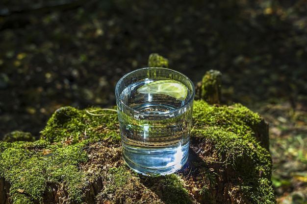 Glass of clean fresh water on tree stump with moss