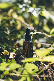 Glass cosmetic bottle on a natural background