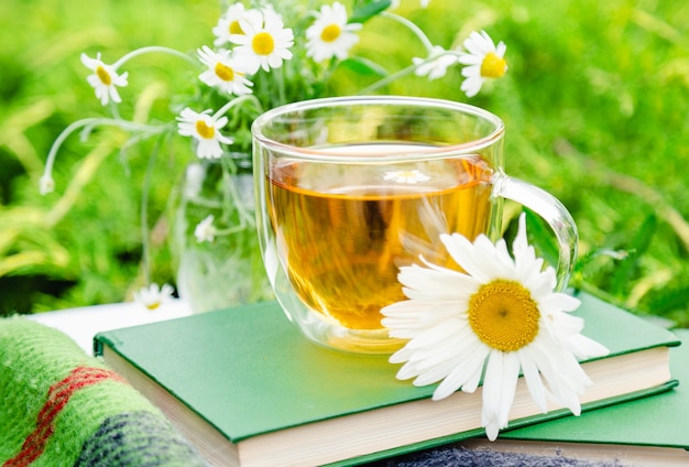 Glass cup of chamomile herbal tea with chamomile flower on books and warm plaid outdoor with nature background in garden. romantic leisure breakfast, hot drink.