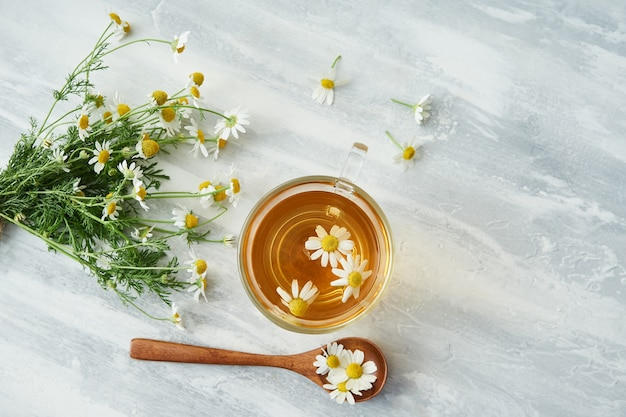 Glass cup of chamomile tea, chamomile flowers, wooden spoon on gray