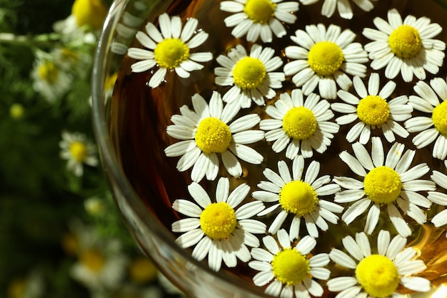 Glass cup of chamomile tea, close up