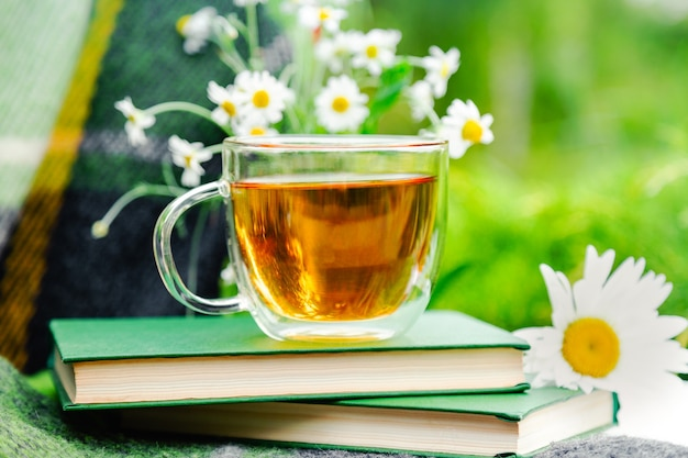 Glass cup of herbal tea with chamomile flower on books, warm green plaid on table outdoor.