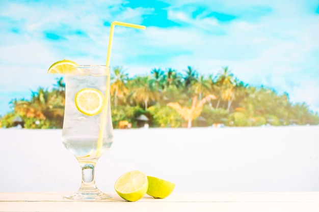 Glass of fresh chilling drink with lime and sliced citrus
