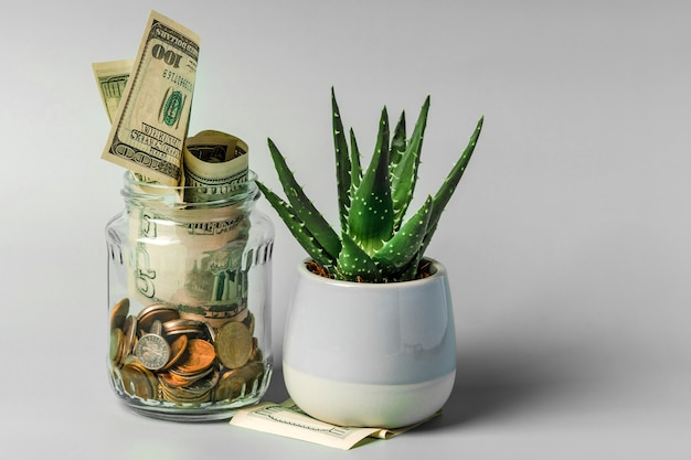 A glass jar with different coins on a pastel background. the concept of accumulating savings