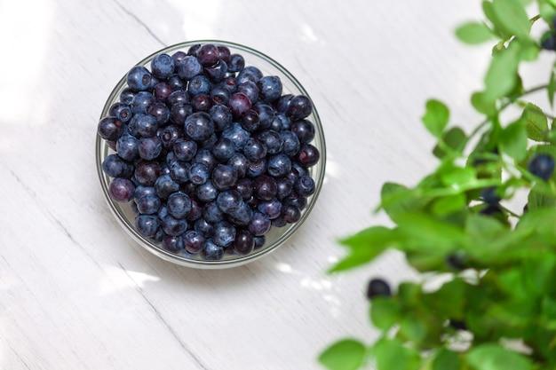 Glass jar with fresh bilberry, bilberry bush. copy space.