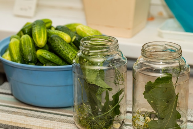 Glass jars on the table with herbs for preserving cucumbers.