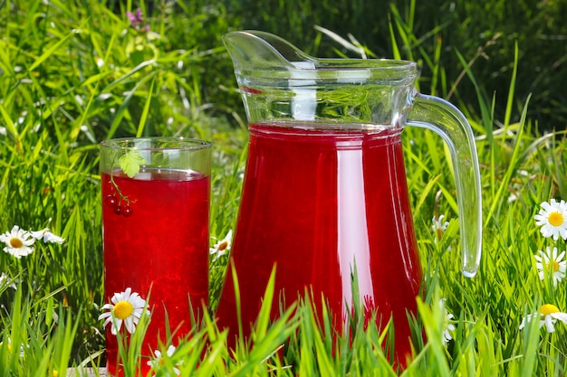 Glass and jug of fruit water over green grass
