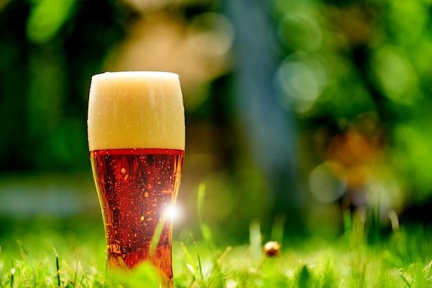 ぼやけた都市公園のある草の上にビールのグラスが立っています