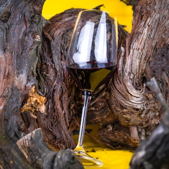 Бокал красного вина на ярком желтом фоне и виноградной лозе