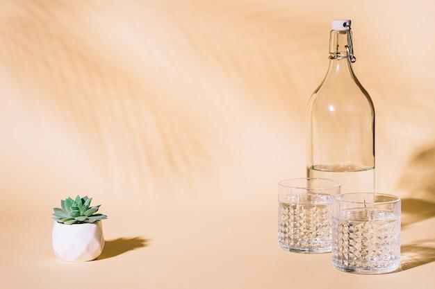 Стакан воды на пастельном фоне с тенью тропических пальмовых листьев и суккулентным растением