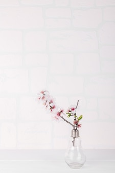 복사 공간 흰색 배경에 아몬드 꽃과 유리 모양 전구 꽃병. 발렌타인과 봄 축제 배경