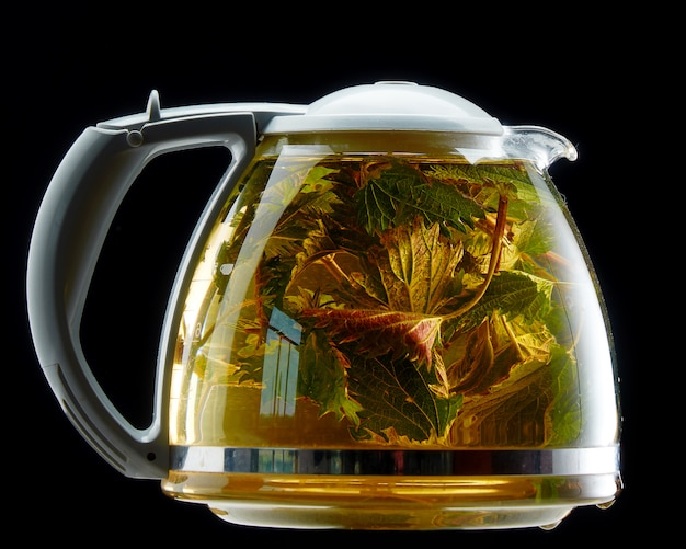 Glass teapot with medicinal nettle on black isolated