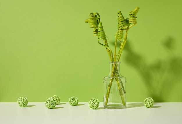 Glass transparent vase with green dried flowers on a white table, green background