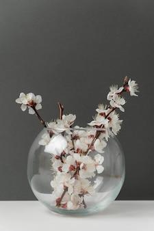 Стеклянная ваза с цветущими ветвями абрикоса на сером фоне. вертикальная рама.