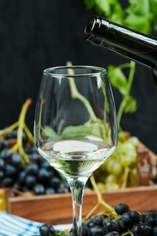 A glass of white wine with a bunch of red grapes.