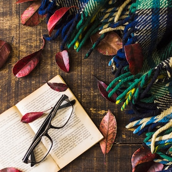 Glasses and book near leaves and warm blanket