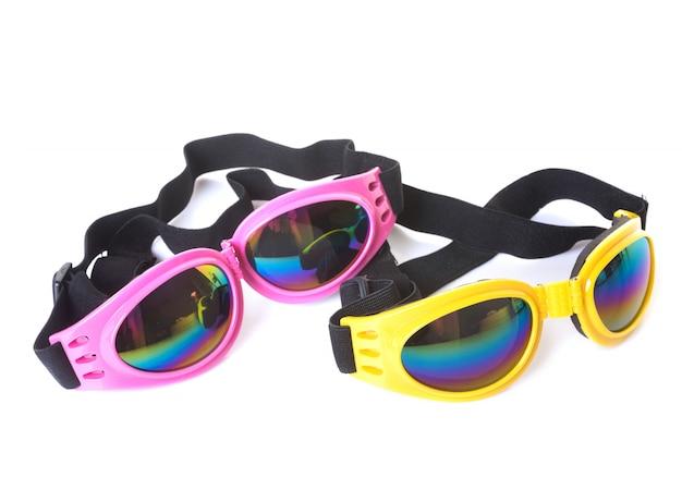 Glasses for dog