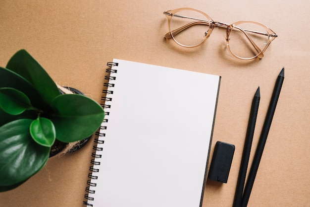 Glasses near plant and stationery
