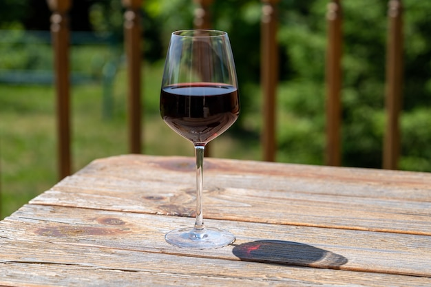 Очки красного и розового вина с тенями на зеленом фоне сада.
