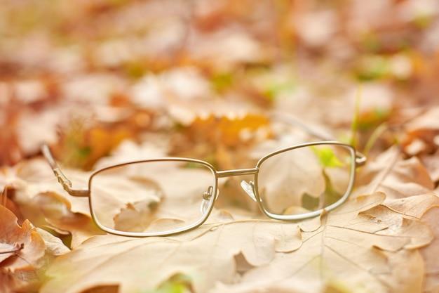 Очки на осенней листве. осенняя концепция потери зрения.