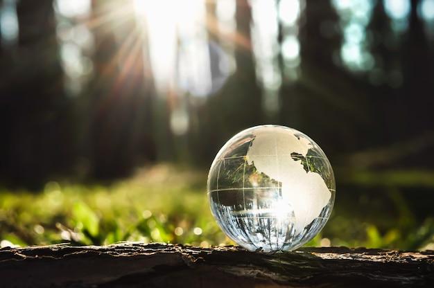 日光の当たる木の上のグローブガラス。環境コンセプト