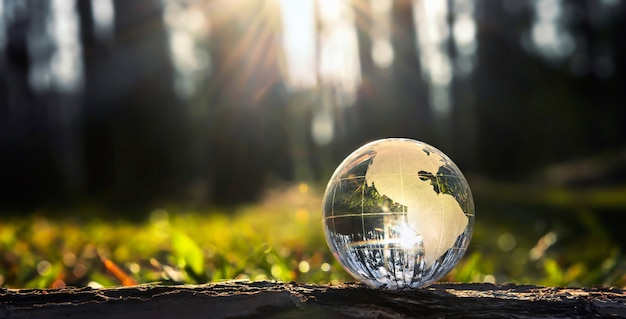 Globe glass on wood with sunshine. environment concept