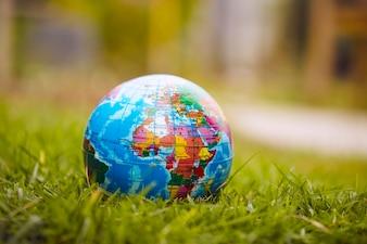 Globe lies on green grass