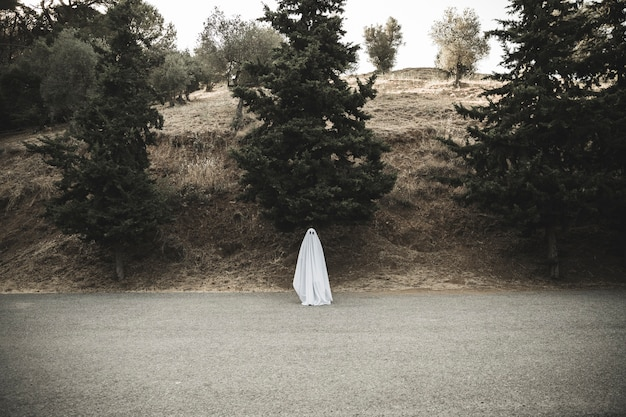 Gloomy ghost standing on countryside road