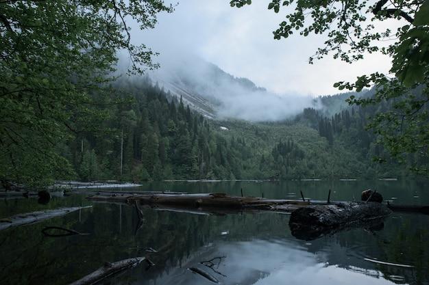 森の中の悲観的な山の湖。湖にかかる霧。