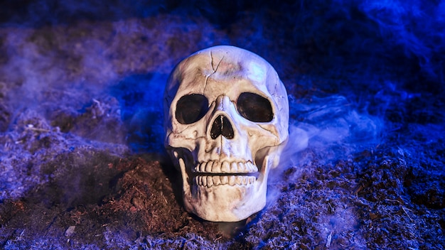 Gloomy skull illuminated by blue light on ground