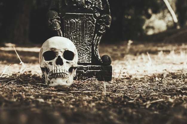 Gloomy skull and tombstone placed on ground