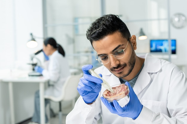 Gloved male scientific researcher in whitecoat taking tiny sample of raw vegetable meat during experiment in modern laboratory