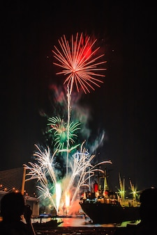 Glowing blooming flowers bursting fireworks light up on black sky