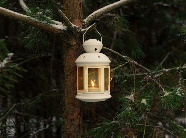 冬の森のモミの木の枝にぶら下がっているランタンの輝くキャンドル。クリスマスシーン。