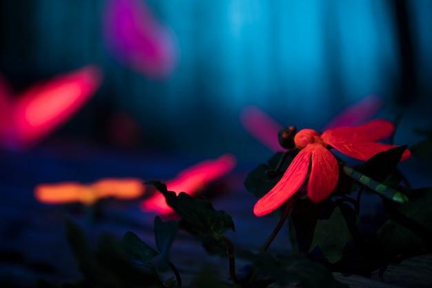 Insetti luminosi nella foresta notturna