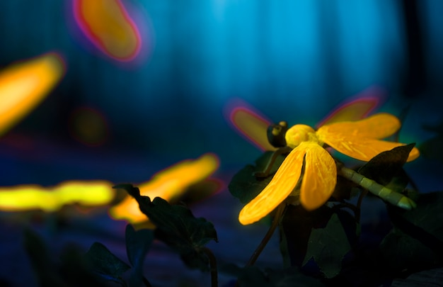 Glowing insects in the night forest
