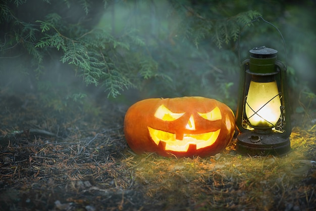 A glowing jack o lantern in a dark mist forest on halloween.