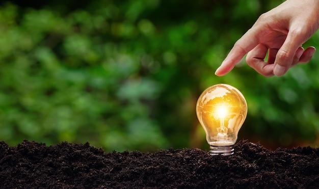 Светящаяся лампочка и рука касается сверху концепции, положенной на почву в мягкой зеленой спине природы