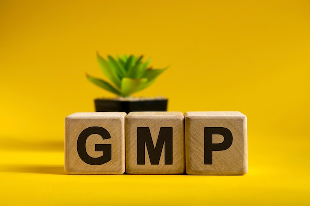 Gmp text on wooden cubes on a bright surface and a black pot with a flower