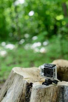 숲에서 프로 카메라 이동