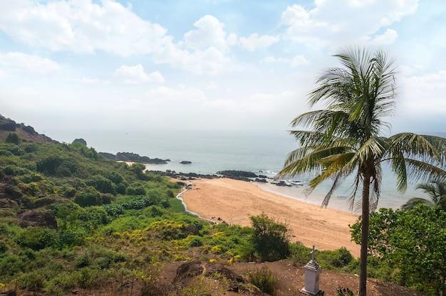 Пляж гоа. пляж васко да гама. пальма на переднем плане на фоне пляжа и моря