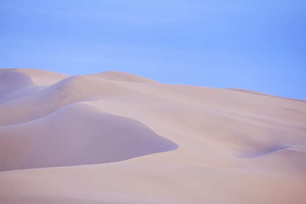 モンゴルのゴビ砂漠