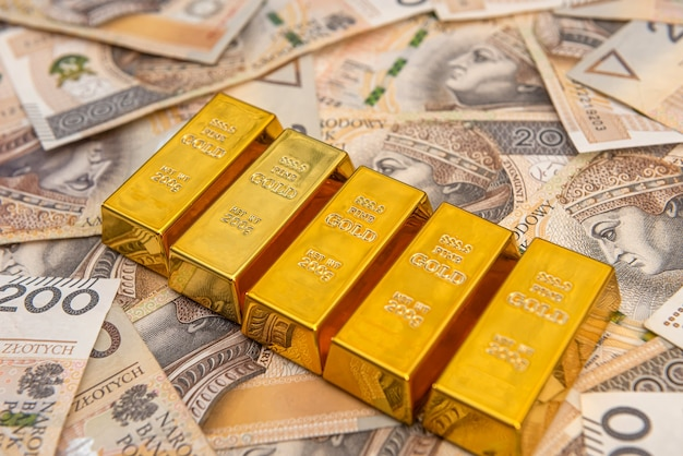 폴란드 돈 zloty pln에 금 괴. 보물