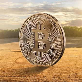 フィールドに対する金貨ビットコイン。デジタル現代アグリビジネスの概念