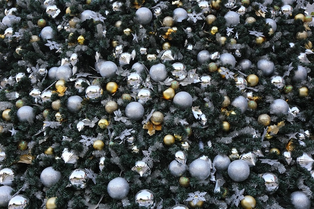 Gold color christmas ball hang on green pine tree
