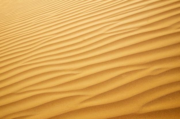 夕日に金の砂漠。砂のテクスチャ。
