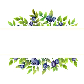Gold frame with watercolor blueberries